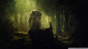 the_wise_owl-wallpaper-960x540
